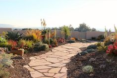 Wide flagstone path with succulents in a low maintenance garden.