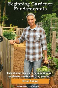 Join me as I walk you through the basics on healthy soil, planting basics, watering techniques, composting 101, raised bed and other gardening methods, fertilizer fundamentals, the many benefits of mulch, and more. When you follow these fundamentals, your plants will be healthy and your garden will thrive - even when gardens around you are failing. | #onlinegardeningcourses #gardeningforbeginners #organicgardening #vegetablegardening Organic Gardening Tips, Vegetable Gardening, Composting 101, Gardening Courses, Raised Bed, Grow Your Own Food, Organic Vegetables, Gardening For Beginners, Planting