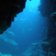 Wouldn't you love to explore this underwater cave? I know I would!