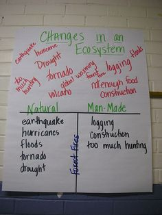 changes to an Ecosystem, natural vs. man-made... homeostasis, balance, interdependence
