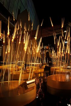 CONTEMPORIST: The lighting installation 'Royal rice field' at the main entrance of 'SCG experience' building to exhibit and honor King Bhumibol. It is represented by a grove of 'light spike' among the water for Thailand and 'gold' represents the brightness of His Majesty in agricultural which is the fundamental of Thai economics.