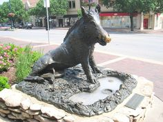 This is one of three early reproductions of the Wild Boar of Florence (sculptor Benelli), by the Marinelli Studios of Florence. Country Club Plaza, Kansas City, Missouri, USA.