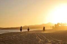 Cabo San Lucas...ive always wanted to ride horses on a beach, how romantic.