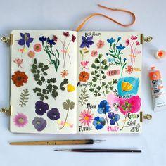 """9,902 kedvelés, 60 hozzászólás – Carolyn Gavin (@carolynj) Instagram-hozzászólása: """"Pressed flowers Botanical No.2 #carolyngavin #watercolor #gouache #botanicalillustration…"""""""