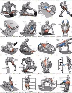 Shoulder Workout Routine To Add Serious Size To Your Shoulders. How To Get The Most Out Of This Shoulder Workout. Fitness Workouts, Abs Workout Routines, Weight Training Workouts, Biceps Workout, Biceps Training, Shoulder Workout Routine, Best Chest Workout, Best Ab Workout, Chest Workouts