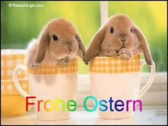 Home meets Hammrich: Frohe Ostern