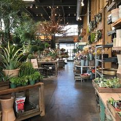 We quite enjoyed our visit to @shopterrain today in Westport, Connecticut. If only I could fit the whole store into my little suitcase