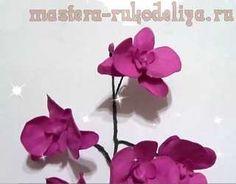 Clase magistral sobre la creación de flores de foamirana: Orquídeas