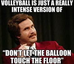 Funny pictures about Truth About Volleyball. Oh, and cool pics about Truth About Volleyball. Also, Truth About Volleyball photos. Will Ferell, Funny Images, Funny Pictures, Fail Pictures, Sports Pictures, Hilarious Photos, That's Hilarious, Fun Funny, Volleyball Memes