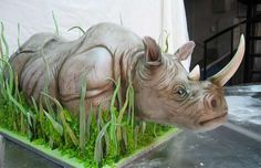 Wow. Rhinoceros Cake - Mike's Amazing Cakes (GALLERY)
