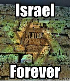 ISRAEL FOREVER #boazyacobi #sixtrental #sixtisrael