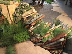 Stacked flagstone with succulents Garden Show, Flagstone, Landscaping Ideas, Firewood, Succulents, Indoor, Gardening, Patio, Landscape