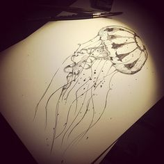 Jellyfish disponibile! #jellyfish #medusa #ink #tattoo #t… | Flickr Jellyfish Tattoo, Simple Living, Medusa, Tatting, Ink, Drawings, Easy, Inspiration, Mural Wall