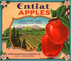 Entiat Vintage Apple Crate Label Entiat Washington | eBay