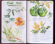 Gardening Journals - Lexington Gardening | Examiner.com