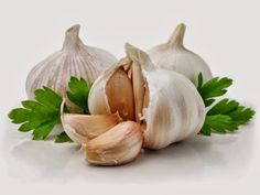 Garlic is high in sulfur, which accounts for some of it's medicinal potency. The stronger the taste of the garlic,