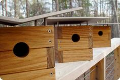 Now there is even a modern roof for your bird house. These new-age bird houses are hand-made and architect-designed.