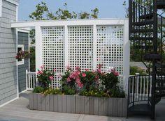 nice 44 Easy And Cheap Backyard Privacy Fence Design Ideas Cheap Privacy Fence, Patio Privacy Screen, Privacy Fence Designs, Garden Privacy, Backyard Privacy, Backyard Fences, Outdoor Privacy Panels, Privacy Planter, Desert Backyard