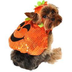 Sequin Pumpkin Dog Costume - Party City