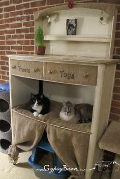 Kitty Condo made from old dresser - Wow why didn't I think of this? You can find a cheap thrift store dresser and redo it for half the price of a cat condo. by dorothea