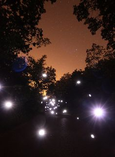 Fire Flies - catching them is one thing, photographing completely another