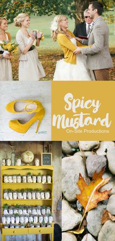 Pantone Fall 2016 Color Report.  Spicy Mustard--is definitely an unexpected and unusual color that adds a splash of fun!  This zesty yellow pairs well with the foliage of the fall leaves.