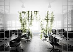 """Sibling installs wireframe """"matrix"""" in Squint/Opera's new office"""