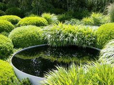Metal reflecting bowl amongst clumps of Japanese forest grass and box ball topiary by julekinz - Gardening Home Garden Design, Garden Landscape Design, Landscape Architecture, Garden Pool, Garden Landscaping, Garden Grass, Back Gardens, Outdoor Gardens, Water Gardens