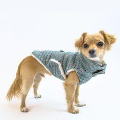 Barc Jacobs Bleu Marc Jacobs Designer, Shiba Inu, Poodle, Chihuahua, Fabric Design, Wool Blend, Lamb, Corgi, Nyc