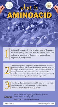 What is Aminoacid #aminoacid #biology #evolution #infography #scientific