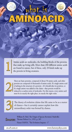 What is Aminoacid #aminoacid #biology #evolution #infography #scientific
