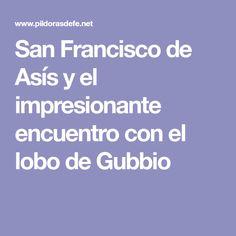 San Francisco de Asís y el impresionante encuentro con el lobo de Gubbio