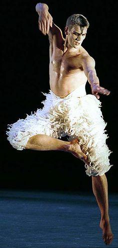 Adam Cooper as the swan in Metthew Bourne's modern Swan Lake