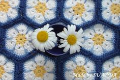 Tina's handicraft : 53 different creations with Afghan flower motif