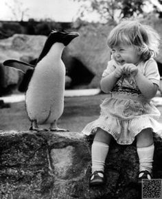 7 Love #Lessons from Penguins ... →  Love #Library