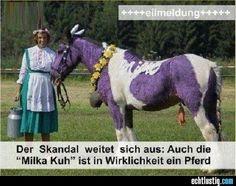 Eilmeldung: Milka Kuh ist ein Pferd