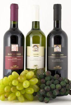 Understanding Italian Wine Labels