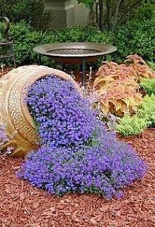 Zobacz zdjęcie mini ogród