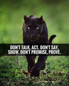 Actions prove who someone is, words just prove who they want to be. Join the Pac Inspirational Quotes About Love, Best Motivational Quotes, Words Mean Nothing, Lion Quotes, Life Changing Quotes, Warrior Quotes, Positive Quotes For Life, Strong Quotes, Meditation Quotes