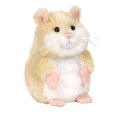 #Hamster soo cute !