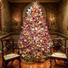 A unique Christmas Tree made of all Dried Flowers and Grasses!!! Bebe'!!! How pretty!!!