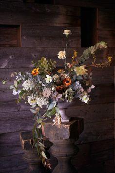Цветы - Saipua