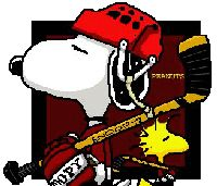 This is the only way you would get me to play hockey.with snoopy and woodstock! Snoopy Und Woodstock, Snoopy Love, Hockey Rules, Hockey Mom, Hockey Stuff, Caps Hockey, Flyers Hockey, Peanuts Cartoon, Peanuts Snoopy