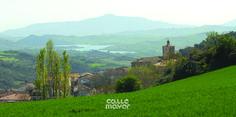 Salinas de Oro - Tierra Estella - Revista Calle Mayor