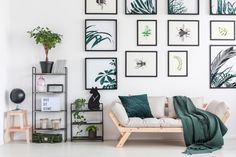 Gold metal table standing in white living room interior with black metal racks, fresh green plants, light grey sofa with cushions and pink blanket and Interior Flat, Home Interior, Living Room Interior, Interior Decorating, Manta Floral, Cozy Sofa, Pink Blanket, Black Blanket, Blog Deco