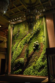Bringing the garden in... want this in my urban warehouse home someday. ;-)