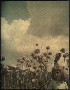 "hauntedgardenbook: ""One of more than 100 photographic autochromes by Thomas Shields Clarke from ca. 1910, recently rediscovered in the archives of the Pennsylvania Academy of the Fine Arts. View a..."