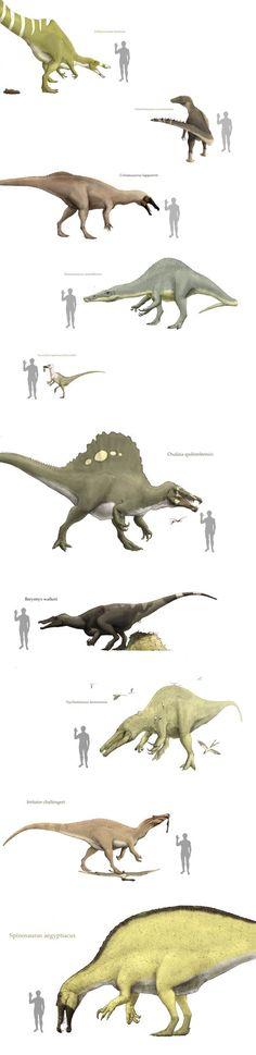 Spinosauriedae 2 by Hyrotrioskjan on deviantART | Click through for huge (4384×18000) version!