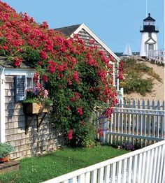 """The island of Nantucket is featured in all of Elin Hilderbrand's novels, including her upcoming one """"The Matchmaker."""""""