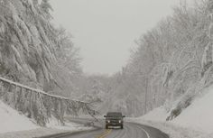 heavy snow during a blizzard caused by Hurricane Sandy in Garrett County, western Maryland October 30, 2012